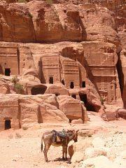 W skałach wykuto tu setki grobowców